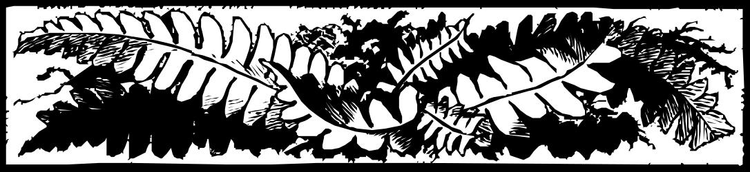 BORDERS,PLANTS,BRTP0273 clipart