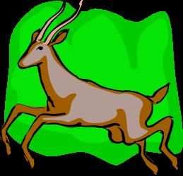 ANIMALS,WILD,GAZLLE1 clipart