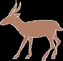 ANIMALS,WILD,WANIM012 clipart