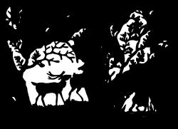 Animals,Animwild,AG000634 clipart
