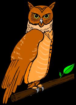 Animals,Animbird,BIRD042 clipart