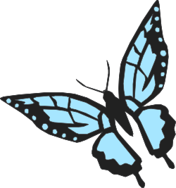 Animals,Insects,BUTTR006 clipart