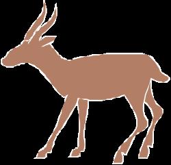 Animals,Animwild,WANIM012 clipart