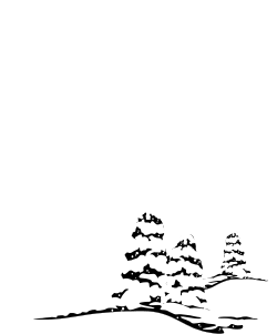 holidays,holichrs,ce85f606fb clipart